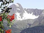 Alaska_fairbanks_hero